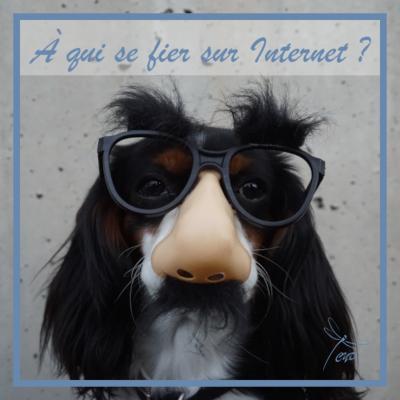 Comment savoir à qui se fier sur Internet?